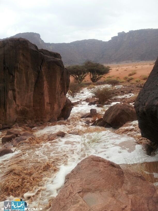 تغطية خاصة لأمطار العلا وضواحيها هذا اليوم (صور )