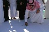رسم أكبر لوحه علي مستوى العالم في محافظة العلا