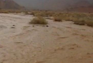 فيديو من أمطار بدا وسيل وادي النجد و أرنوا