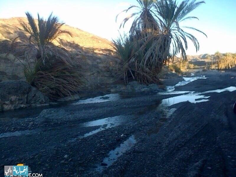 شلالات وجداول هجرة الفرش بعد الأمطار الأخيرة
