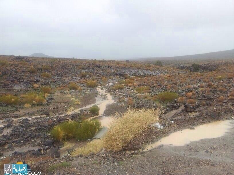 أمطار قرية الفارعة صباح ومساء اليوم الأحد