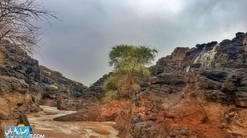 بالصور والفيديو أمطار قرية النشيفة الخميس ٢٥-١٠-١٤٣٥هـ