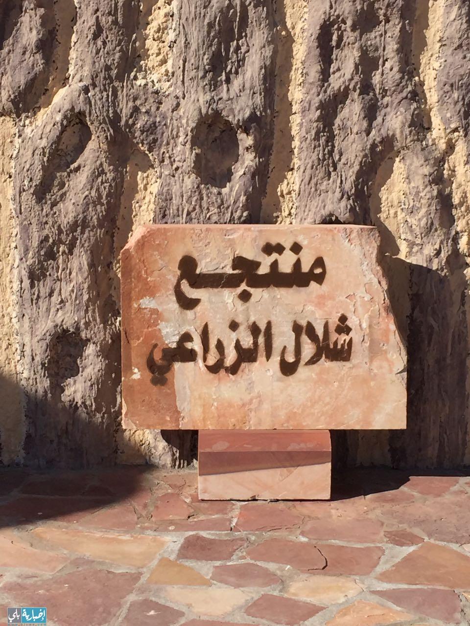 افتتاح منتجع شلال الزراعي بمحافظة العلا